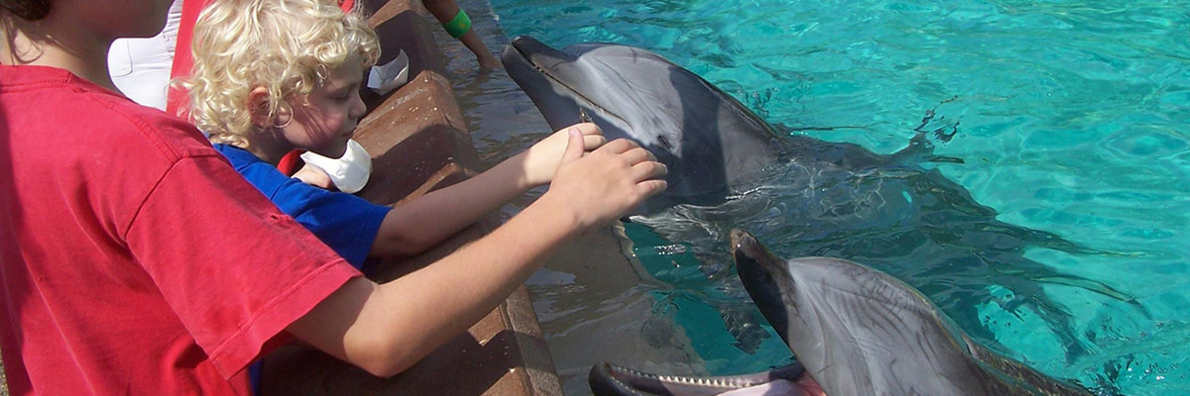 Seaworld, Florida
